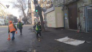 Запорожские коммунальщики обрезали ветви в центре города, которые препятствовали движению транспортных средств