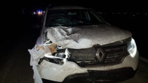В Запорожском районе на пешеходном переходе сбили женщину, — ФОТО