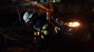 У Запоріжжі 52 рятувальники ліквідовують наслідки буревію: вже прибрано 15 дерев, — ВІДЕО