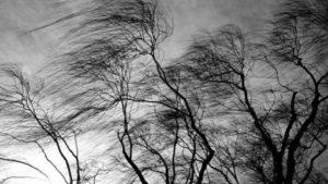 Попередження надзвичайників: у Запоріжжі очікується швальний вітер