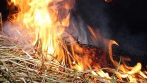 В Запорізькій області палала тисяча кілограмів сіна