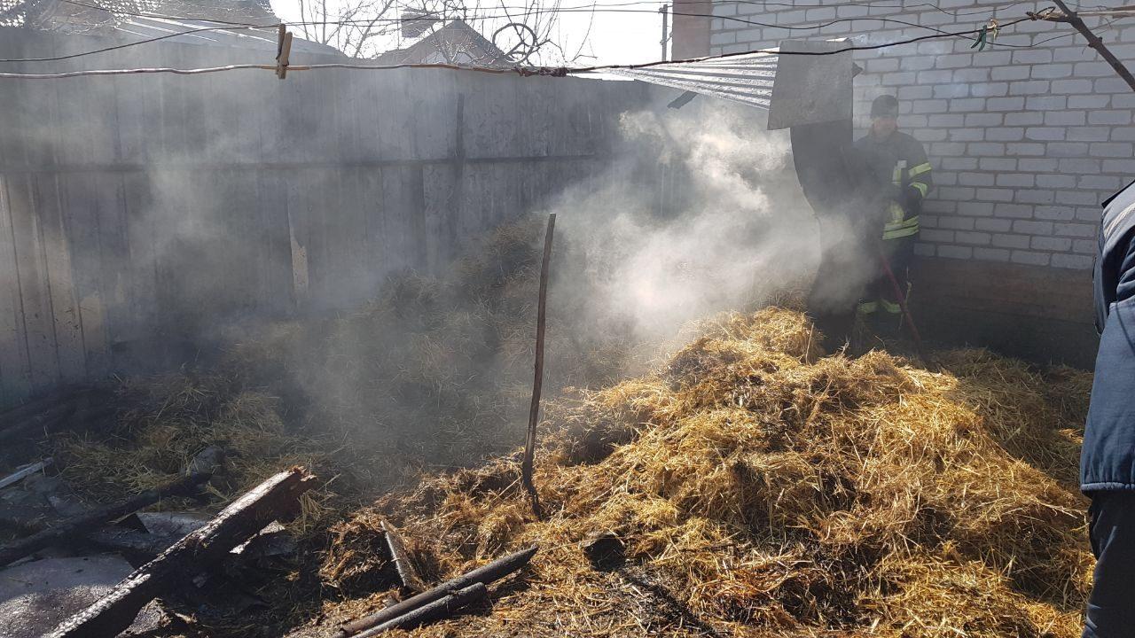 В Запорожской области из-за детской игры едва не сгорел двор, — ФОТО