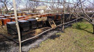 У Вільнянському районі палала пасіка: постраждав чоловік, — ФОТО
