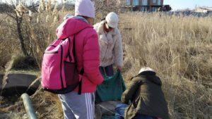 В Бердянську у колодязі на березі моря знайшли трупи тварин, — ФОТО (18+)
