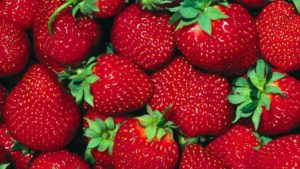 В Запорізькій області вже почали продавати полуницю