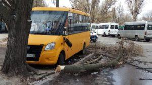 В Запоріжжі на маршрутне таксі впало дерево, — ФОТО