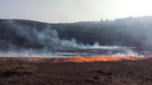 В Запорожской области за сутки произошло более двадцати пожаров на открытых территориях: где горело больше всего