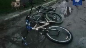 В Запорожье задержали велосипедных воров, — ФОТО