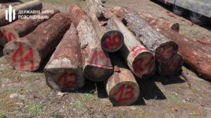 Директор запорожского лесхоза вымогал 360 тысяч взятки за продажу древесины, – ФОТО