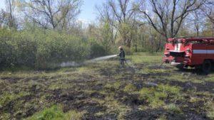 За добу на території Запорізької області сталося десять пожеж на відкритих територіях, одна — в лісі