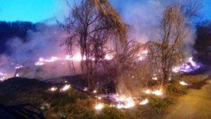 Как выглядят пожары в экосистемах Запорожской области, - ФОТО
