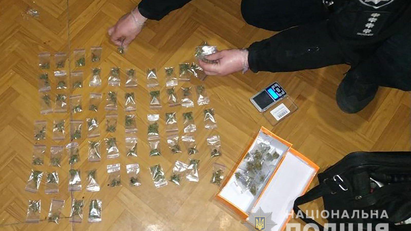 Житель Запорожья хранил дома наркотиков на 20 тысяч гривен