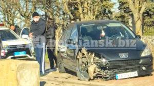 В Бердянську автомобілістка збила лева, — ФОТО