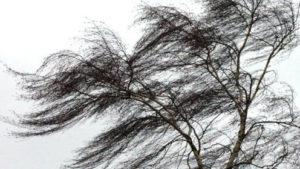 Запорізькі ДСНС-ники попереджають про небезпечні метеорологічні явища