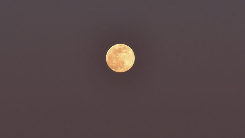 Як виглядав рожевий місяць, який зійшов минулої ночі над Запоріжжям, - ФОТО