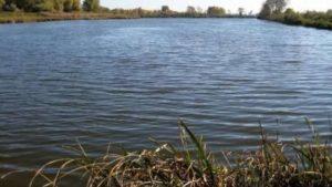 В Пологівському районі  селяни в ставку знайшли тіло чоловіка