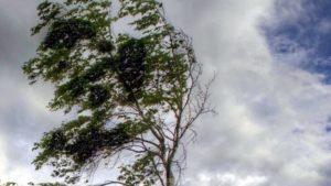 Мешканців Запоріжжя та області попереджають про посилення вітру
