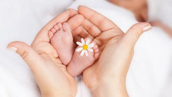 Президент Украины присвоил многодетным жительницам Запорожской области звание «Мать-героиня»