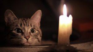 Вниманию горожан: в Запорожье почти 70 домов останутся без электроэнергии, – АДРЕСА