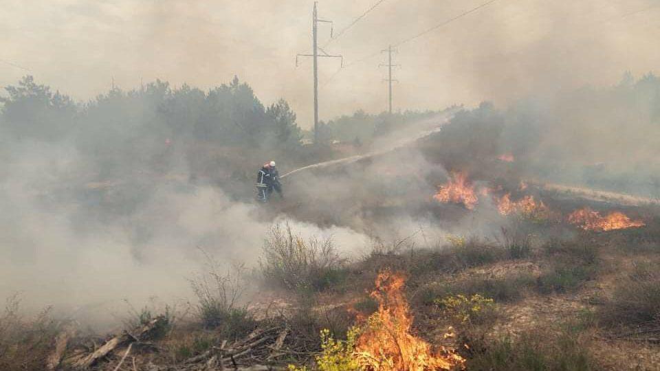 У Запорізькій області півсотні рятувальників гасили масштабну пожежу, – ФОТО