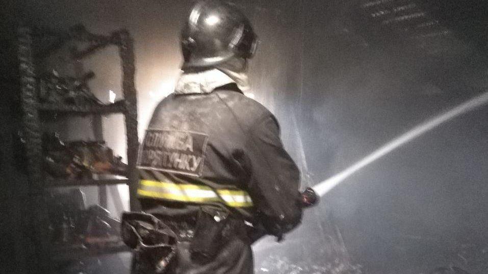 У Запорізькій області горів приватний будинок: пожежні врятували пенсіонера і дитину, господар – у лікарні, – ФОТО