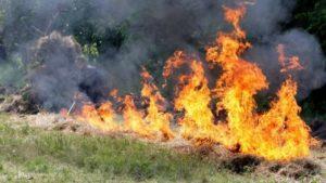 Запоріжців попереджають про високу ймовірність пожеж під час святкових вихідних