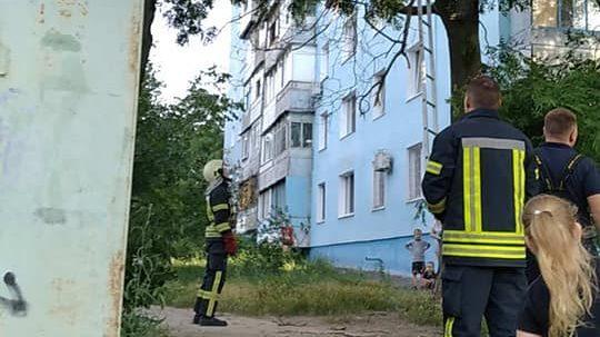 В Запоріжжі рятувальники зняли з дерева кошенят, — ФОТО