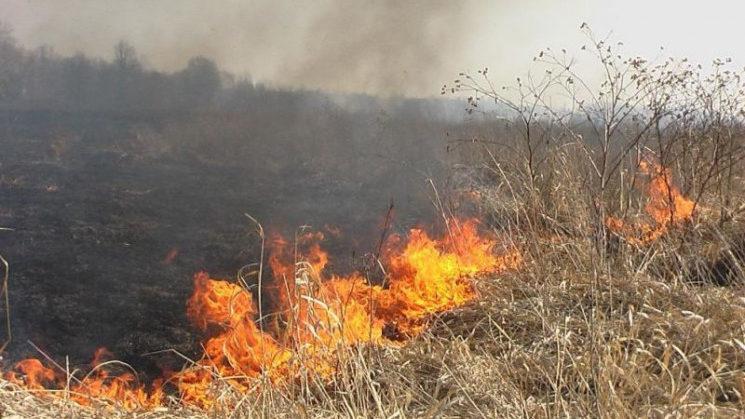На территории Запорожской области увеличилось количество пожаров на открытых территориях