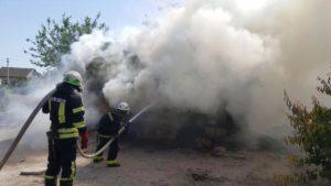 В Акимовке полностью сгорела хозяйственная постройка, — ФОТО