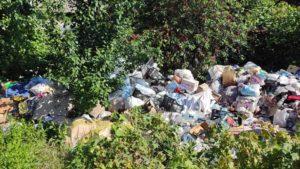 В приватному секторі Дніпровського району вивезли сміття, яке накопичувалося роками місцевою мешканкою, — ФОТО