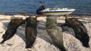 В лиманах Запорожской области в очередной раз нашли сетки для ловли рыбы