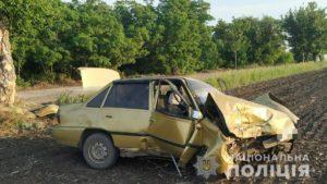 У Запорізькій області п'яний водій влаштував смертельну ДТП: загинули двоє людей, – ФОТО