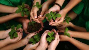 Сортування відходів, відповідальне споживання і здоровий спосіб життя: як в запорізькій школі дітям прищеплюють екологічну культуру