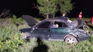 У Запорізькій області в ДТП перекинулася іномарка: постраждала 11-річна дівчинка, – ФОТО