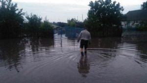 У запорізькому селі через сильний дощ затопило декілька будинків, – ФОТО