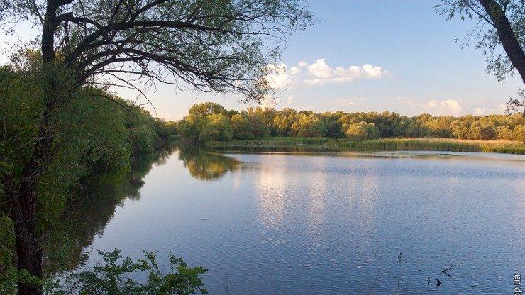 Обмеление Днепра и малых рек может привести к водному коллапсу в Запорожской области, – эксперты