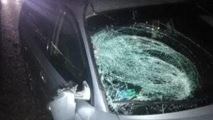 На Хмельниччині чоловік з Запоріжжя на автомобілі насмерть збив жінку
