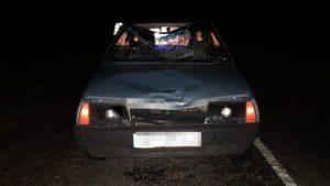 Под Запорожьем насмерть сбили пешехода: полиция разыскивает свидетелей, – ФОТО