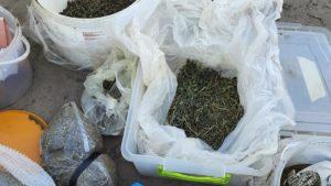 У Запорізькій області у 72-річного пенсіонера виявили 5 кілограмів наркотиків, – ФОТО
