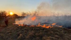 30 ГСЧС-ников за последние сутки тушили 7 пожаров в экосистемах Запорожской области