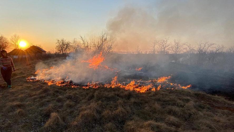 За минулу добу в екосистемах Запорізької області сталося 10 пожеж