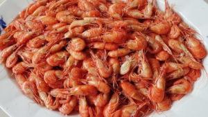 На курорті в Запорізькій області масове отруєння: відпочивальники їли креветки