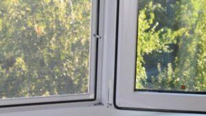 В Запорожье прохожие под домом нашли труп женщины: полиция рассказала подробности
