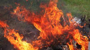 До кінця робочого тижня в Запоріжжі царюватиме стан високої пожежної небезпеки