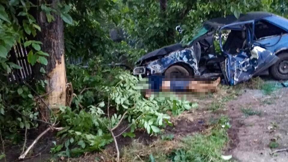 У Запорізькій області автомобіль вилетів з дороги і протаранив дерево: водій загинув на місці, – ФОТО