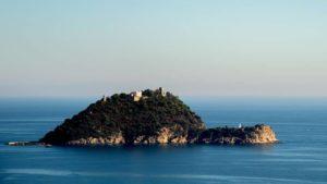 Сын президента запорожского завода «Мотор Сич» Богуслаева купил остров в Италии за 10 миллионов евро, – ФОТО