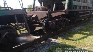 В Запорожской области грузовой поезд насмерть сбил пенсионерку, которая перебегала пути, – ФОТО