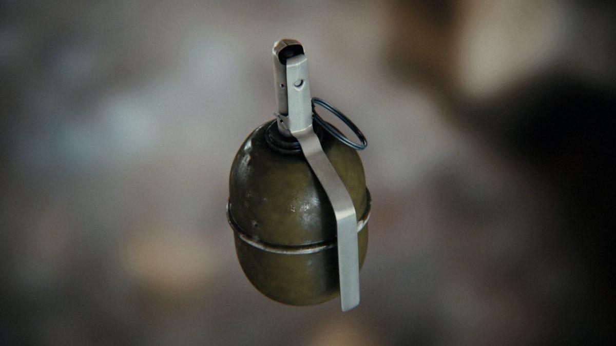 В Запорожской области мужчина подорвался на гранате