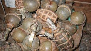 В лісосмузі біля села в Запорізькій області знайшли 20 артснарядів та 8 гранат