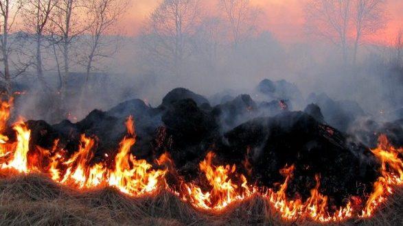 120 рятувальників минулої доби гасили пожежі в екосистемах